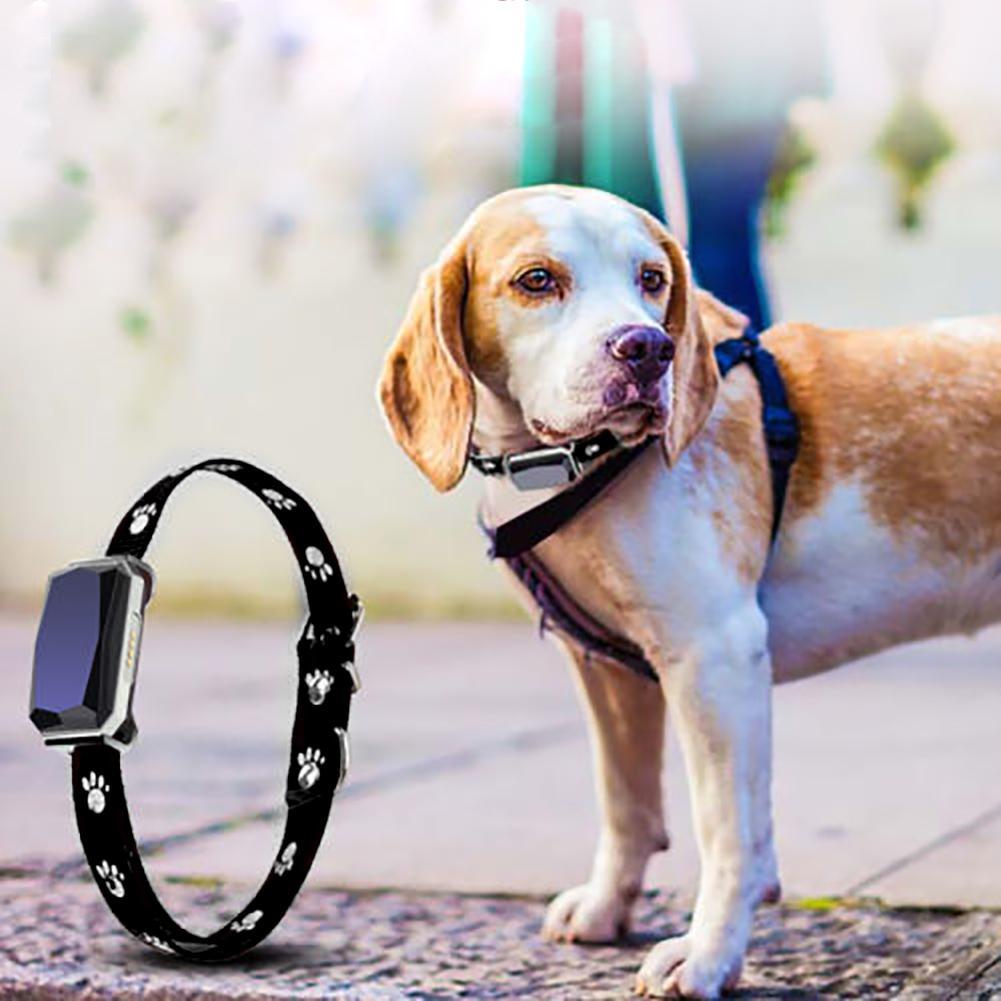 Pet Welpen Gps365 Bluetooth Wifi Tracker Echtzeit Tracking Lage Anti-verloren Kragen 2019 Heißer Sicherheit & Schutz Sicherheitsalarm