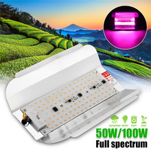 50W 100W LED Phyto Flood Lights 5730smd 60lm/W High Power Full Spectrum LED Grow Light Hydroponic seeding AC220V IP65 Waterproof