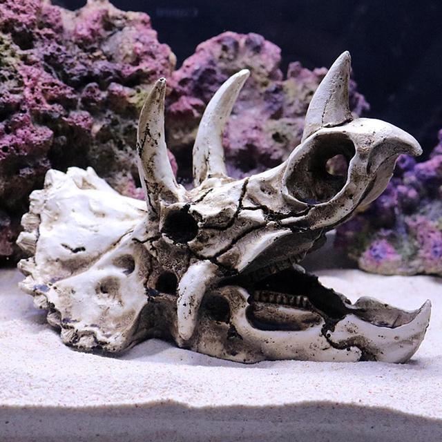 Dinosaur Triceratops Skull Aquarium Decoration  5