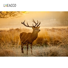 Laeacco Field Cervus Canadensis Children Portrait Photography Backgrounds Customized Photographic Backdrops For Photo Studio