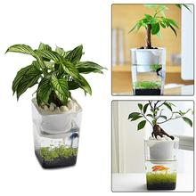 Anti-fall Fish Vegetables Symbiotic Water Grass Desktop Mini Tank Ecological Plastic Convenient Grows Plants