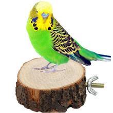 AsyPets деревянный крест планкон Pet Стенд Игрушка для белки шиншиллы попугая