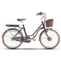 310407/24-inch imported lithium battery city bike / electric bicycle / power car / variable speed electric bicycle