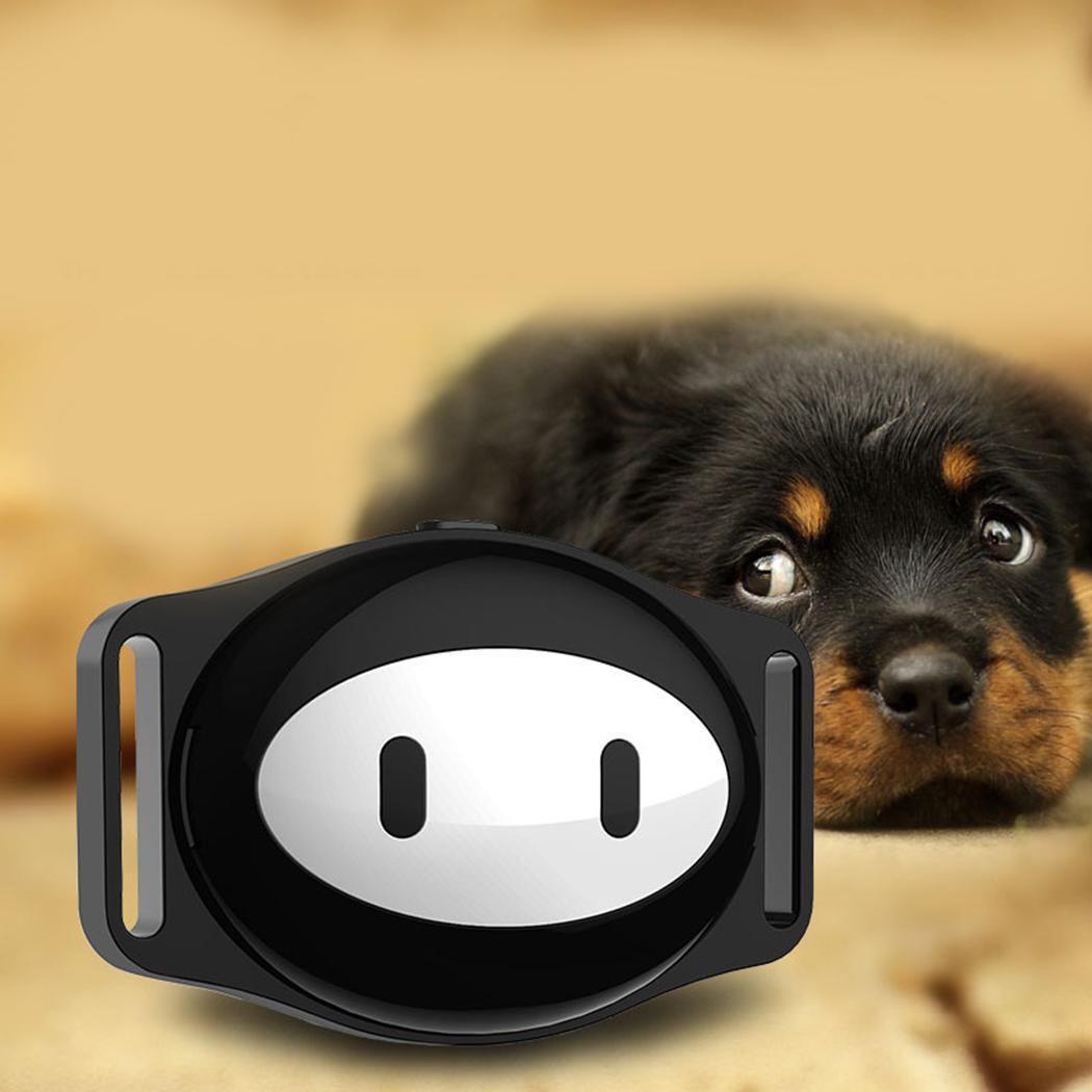Mini traqueur GPS étanche Anti-perte localisateur peut cultiver de bonnes habitudes alimentaires animaux de compagnie. Pour chien chat