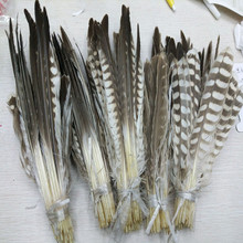 Eagle Decoration Christmas Wedding Scarce Natural Home-Craft Wholesale Feather-20-40cm/8-16inch