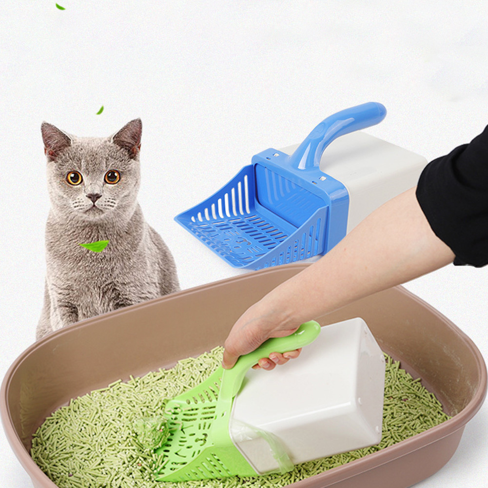 фото наполнитель и лоток картинка чисто белые коты