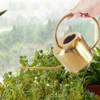 Pot d'arrosage de jardinage européen en acier inoxydable 1300 ml Pot de douche domestique en or petite fleur d'arrosage