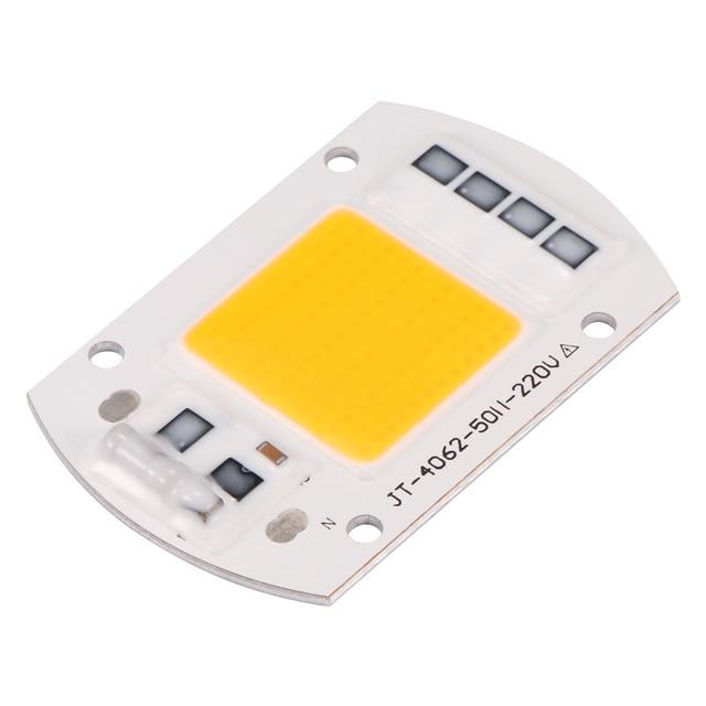 LED Bulb Flood Light Spotlight 20W 30W 50W 100W High Power COB LED Lamp Chip 110/220V Smart IC No Driver COB LED Diode
