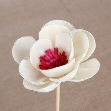 Личи вишневый цвет Искусственный цветок Рид диффузор Замена палку DIY ручной работы украшения дома простой стиль ротанга