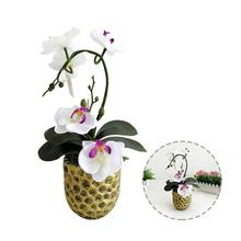 Indoor Home Decoration Mini Fake Flower Ornaments Simulation Butterfly Orchid Everlasting Green Flowers Small Potted Plants