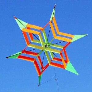 3D Colorful Hexagon Plum Flowe