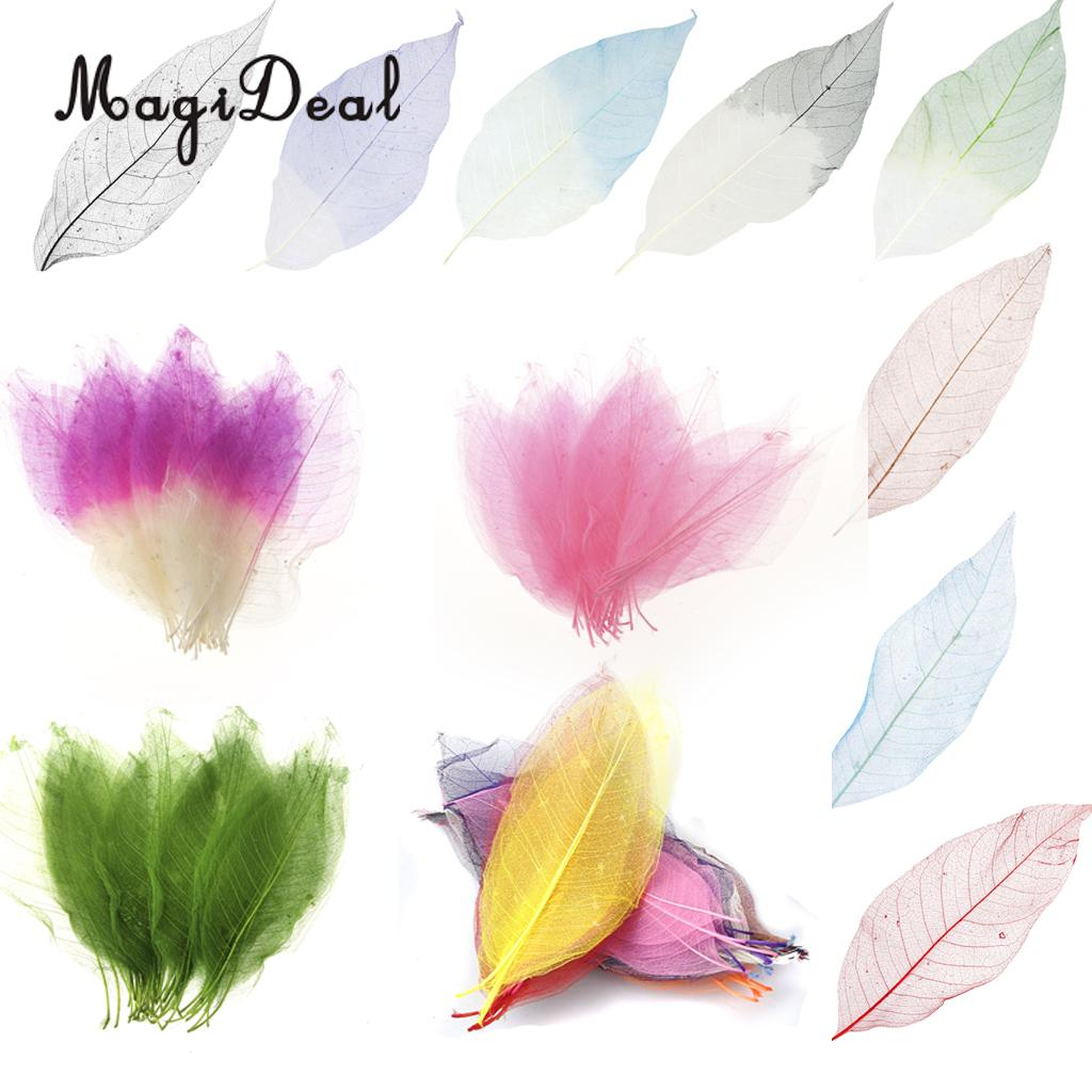 Small Decorative Skeleton Leaves scrapbooks Florists For Craft Free P/&P!