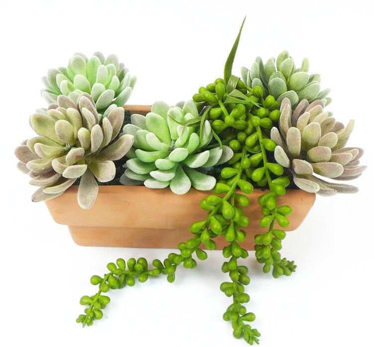 Mini Echeveria Elegance Yapay Etli Bitki Plastik Çiçek Dekorasyon - Tatiller ve Partiler Için - Fotoğraf 5