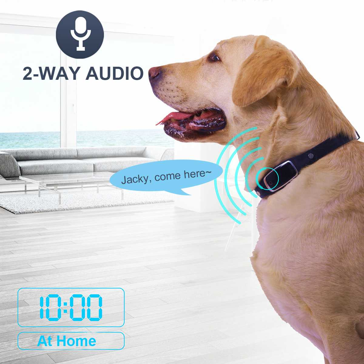 Мини водонепроницаемый ошейник для собак и кошек, идентификационный локатор для домашних животных, gps трекер, GSM устройство слежения, Wi Fi устройство слежения в реальном времени для собак, кошек, устройство слежения - 2