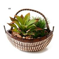 Simulated Succulents Bonsai Innovative Living Room Table Decoration Green Plant Ornament Potted Plant Crafts Quick Delivery