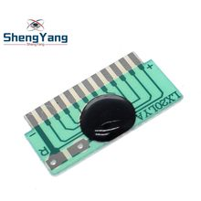 ShengYang LX20LYA ISD1820 10s 20s 20secs Voice Recorder Chip Sound Recording Playback Module Talking Music Audio Recordable(China)