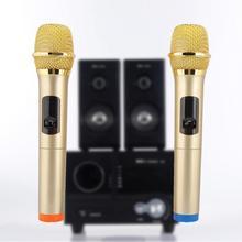 Портативный беспроводной ручной микрофон система приемник комплект для караоке речи беспроводной микрофон для встречи Горячий
