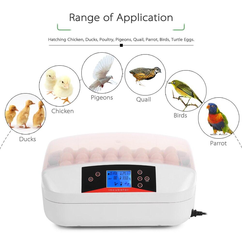 32 eier Intelligente Automatische Ei Inkubator Temperatur Control Hatcher für Schlüpfen Huhn Ente Vogel Wachtel Geflügel-in Futter- und Wasserversorgung aus Heim und Garten bei  Gruppe 3