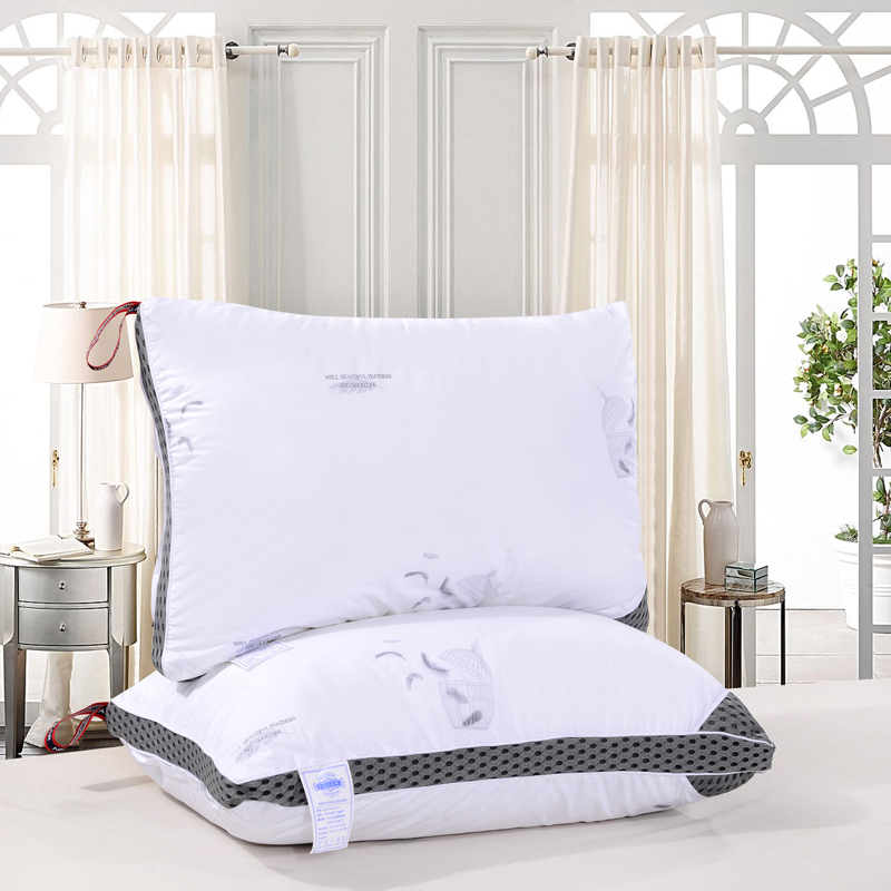 Free Shipping 48*74*20cm Antibacterial anti mite feather velvet stereo pillow / cotton pillow / cushion / can wash the pillow