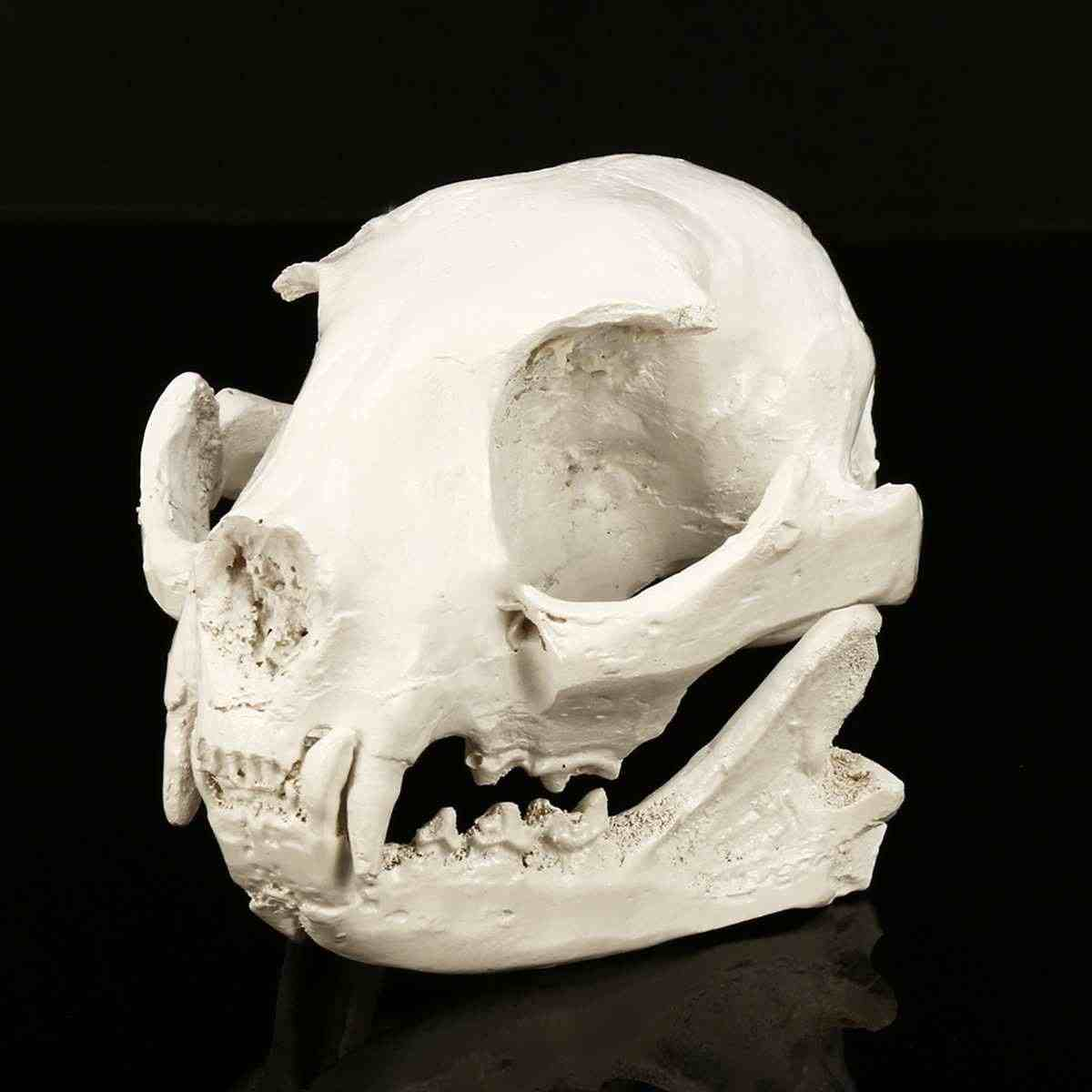 1Pc Fortune Cat Resin Skull Sculpture Statue Skeleton Model Home Aquarium Fish Tank Ornaments Water Grass Landscaping Home Decor