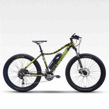 Electric Bicycle Bike Multitipo Fat Snow Mountain 36 V Lithium Battery Pas Beach Brake Hydraulic Shock