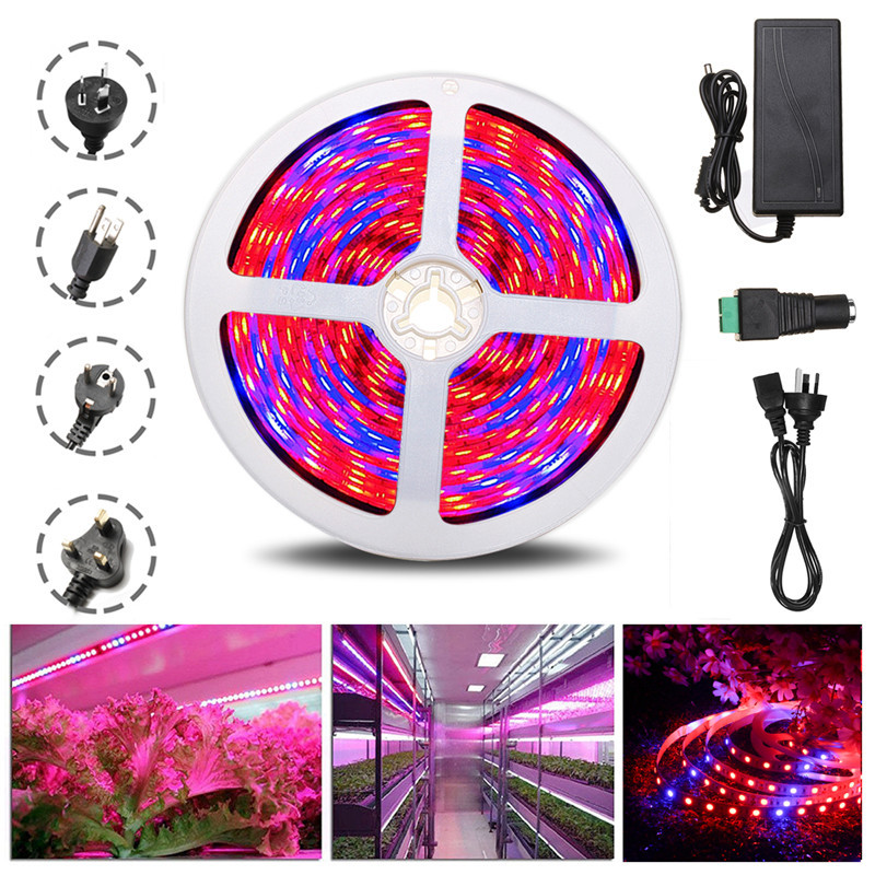 DC12V 5M R:B 4:1 Waterproof 5050SMD 300 Full Spectrum Grow LED Strip Lights Kit For Plant Veg For Greenhouse Hydroponic Plant
