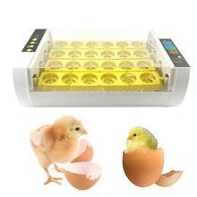 24 яйца маленький полностью автоматический инкубатор куриных яиц инкубатор автоматически контролирует температуру утки перепелиных голубей птицы Hatcher