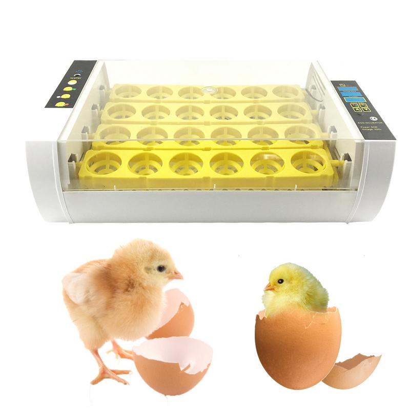 24 Eggs Small Fully automatic Incubator Chicken Egg Incubator Automatically Control Temperature Duck Quail Pigeon Birds Hatcher