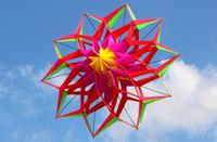 Large Rainbow Colorful 3D Lotus Flower Kite Single Line Outdoor Sports Toy Flying Box Kite For Kids Sport With Flying Toy