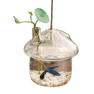 Planter-Vase Terrarium-Container Hanging-Glass Fish-Tank Mushroom-Shaped Garden-Decor