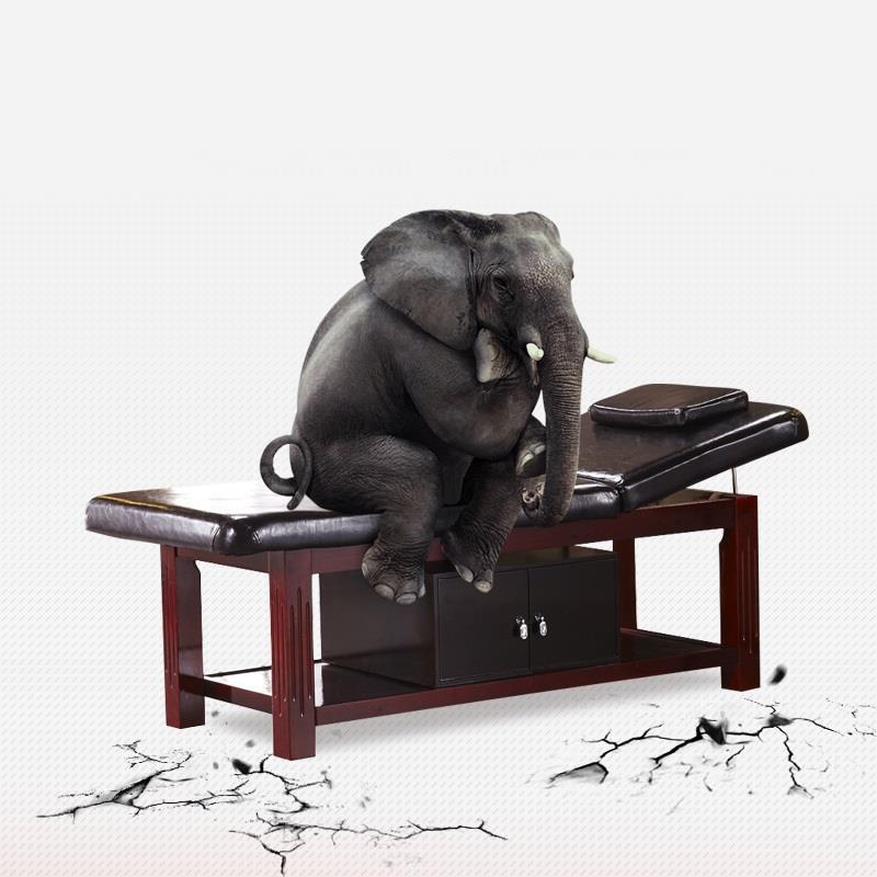 Tafel Pliante składany fotel spa Camilla Plegable De masaje Tempat Tidur Lipat składane krzesło do salonu tabeli łóżko do masażu