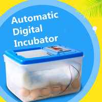 30 64 Eggs 12V/220V Electronic Digital Incubator Hatcher Automatic Incubation Chicken Duck And Goose Incubator