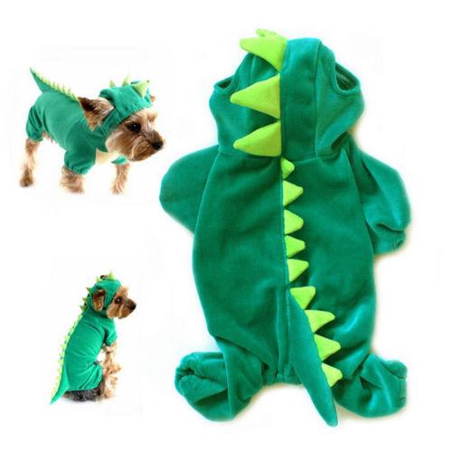 Dinosaur Costume 6