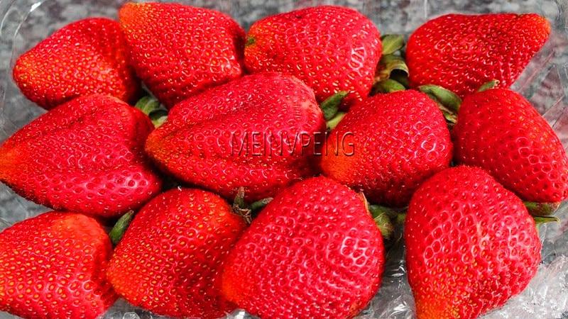 Hot Sale!300pcs/bag Strawberry Bonsai Giant Strawberry Organic Fruit Plant Vegetables Non-GMO Bonsai Pot For Home Garden Plant