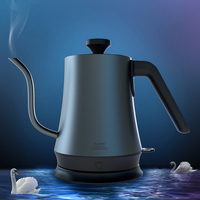 Pure Titanium Health 1L Water Kettle Handheld Instant Heating Electric Water Kettle Auto Power off Protection Wired Kettle