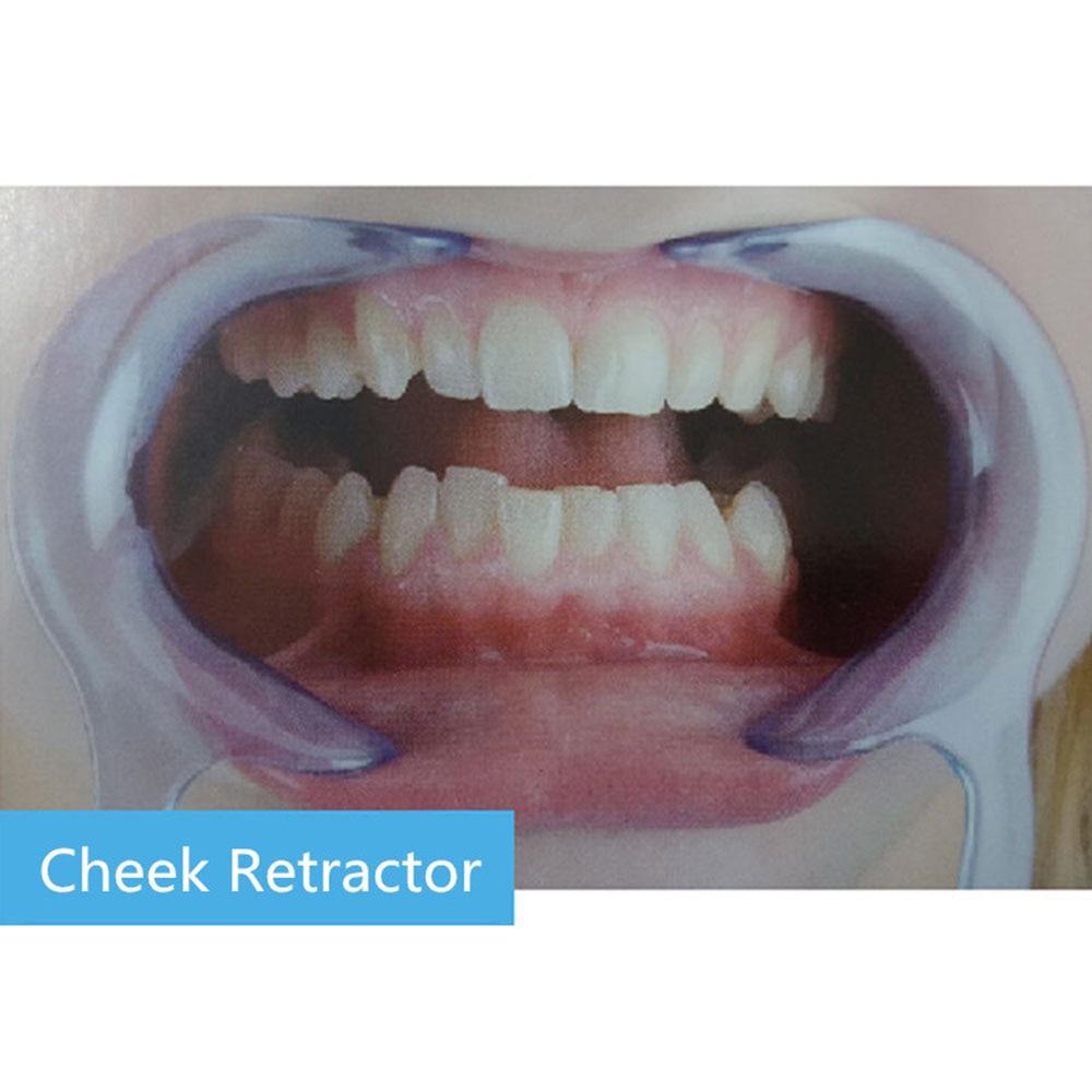 10 Pcs C Type Mouth Opener Tooth Straightener Spreader Lip Oral Clean Opener Dental Cheek Lip Retractor Mouth Opener Model
