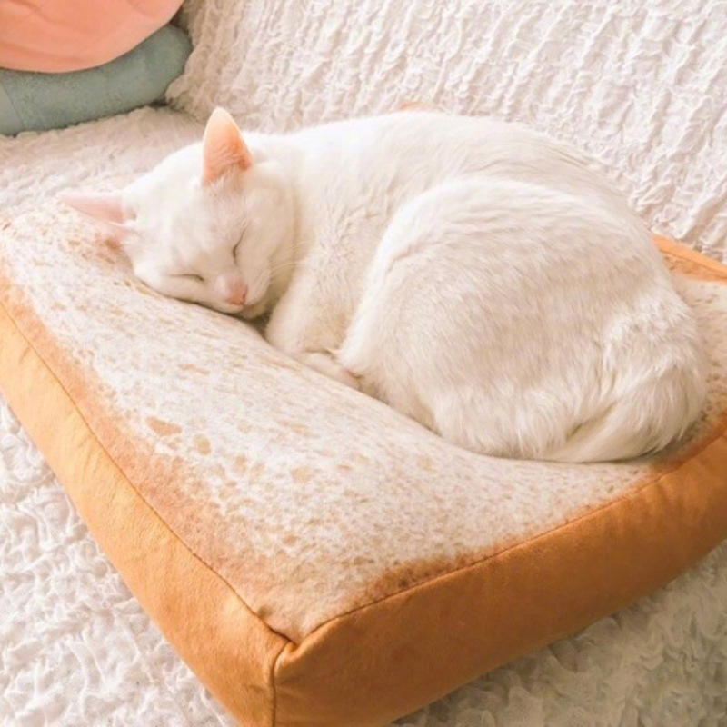 New Design Bread Mat Toast Cat Bed Mat Soft Fleece Puppy Cushion Detachable Wash Small Dog Bed For Chihuahua 38*38*6.5cm 27