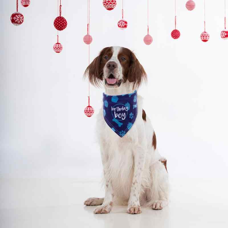 5 couleurs chat chien Bandage bavoirs écharpe collier pour animaux de compagnie foulard salive serviette pour petits chiens moyens produits pour animaux de compagnie