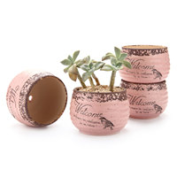 Stlye Round Sucuulent Cactus Plant Pots Flower Pots Planters Containers Window Boxes Pink Pack
