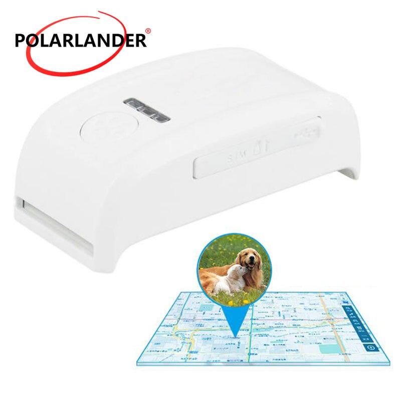 GPS GSM/GPR localisateur de traqueur de voiture étanche système en temps réel suivi pet mini haute qualité
