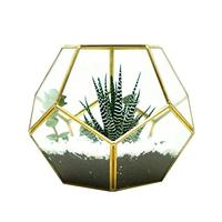 Flower Pot Glass Geometric Terrarium Ball Shape Close Fern Moss Succulent Planter Pot Display Case Box Garden Decoration