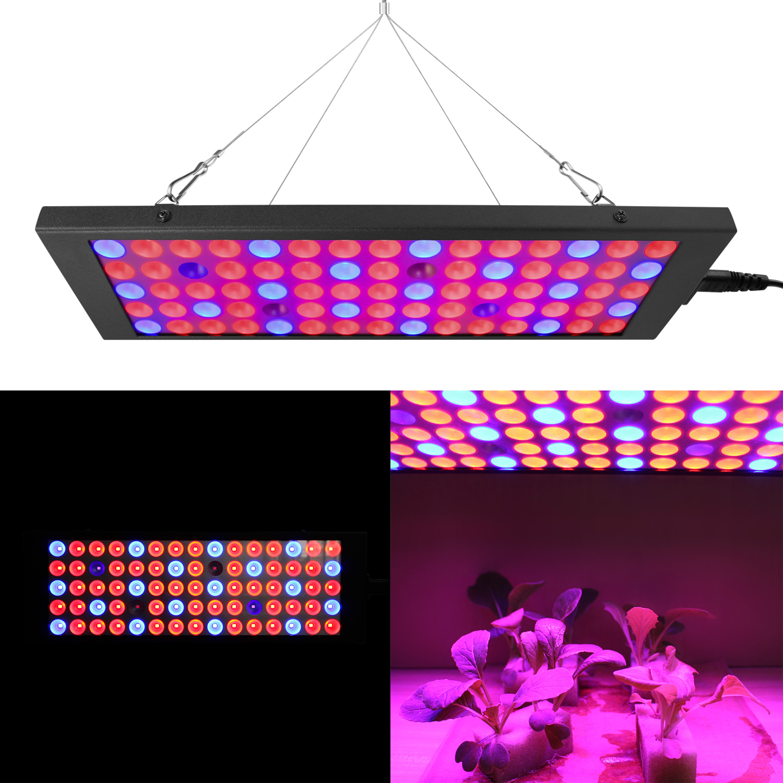 best top led grow blue light bulbs ideas and get free