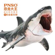 PNSO Megalodon סרט מג האבטיפוס פה יכול להיות נפתח כריש לבן גדול 20cm