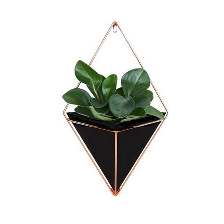 Getrouw Muur Opknoping Container Opbergrek Huishouden Innovatieve Indoor Woonkamer Ornament Decor Tuin Geometrische Vetplanten Planten P Snelle Kleur