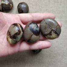 Natural turtle stone small play crystal ornaments hand piece home decoration landscaping ore specimen