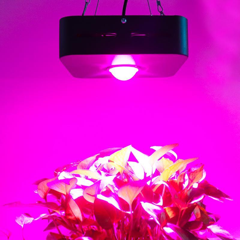 150 W lampe en croissance COB LED grandir lumière spectre complet 380-800nm plante éclairage Fitolampy pour plantes fleurs culture de semis