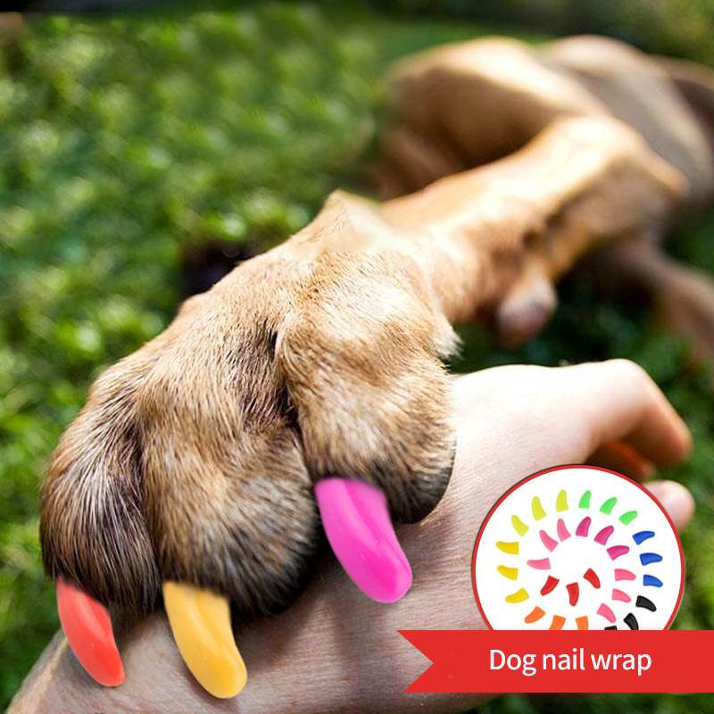 Pets Dog cat Anti-scratch Nail Caps Soft Silicone Paw Nail Cover Puppy Claw Decoration Manicure Nail Art Dog Cat Supplies 20 Pcs
