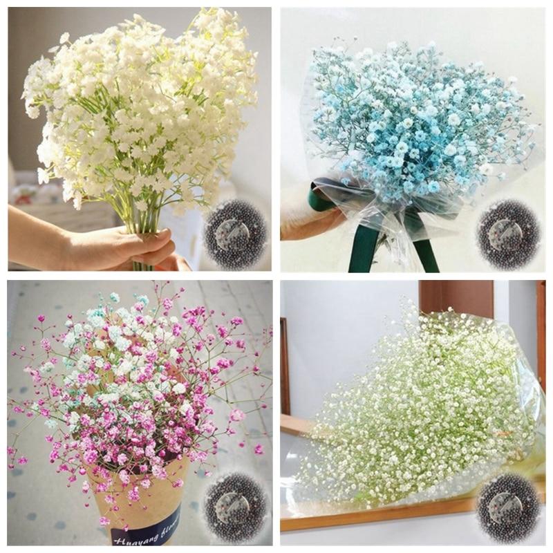 100 Pcs Gypsophila Paniculata Plant Outdoor & Indoor Perennial Garden Flower Ornaments Bonsai For Wedding Decor Easy To Grow