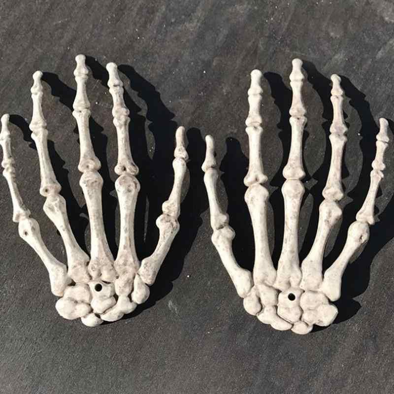 Esqueleto de modelo médico anatómico humano de hueso, ayuda médica para Aprender anatomía, boceto de arte, 1 par de mano con esqueleto y Calavera, hueso de Halloween