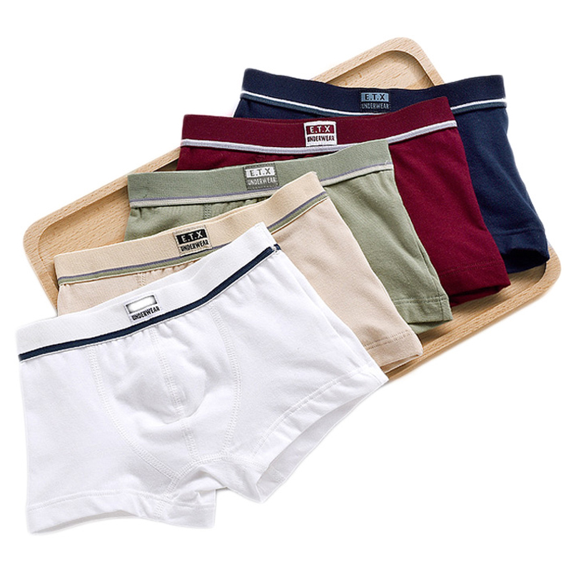 Boys Underwear Children Panties Boys Cotton Boxer Shorts Children's Panties Kids Underwear For 2-16 years 5 pcs